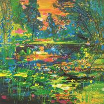Soleil couchant sur l'étang