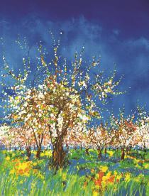 Cerisiers à la Croix d'Albion